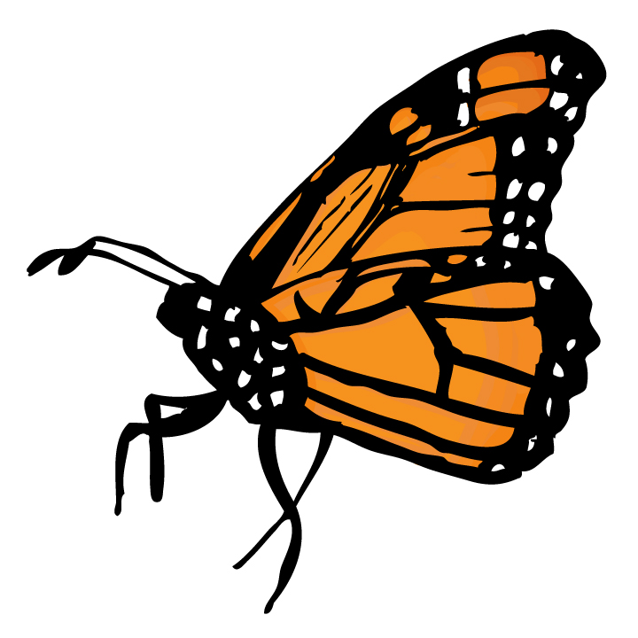 Monarch Butterfly Clipart-Monarch Butterfly Clipart-12