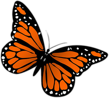Monarch Butterfly Free Butterfly Graphic-Monarch butterfly free butterfly graphics images of butterflies animations clipart-4