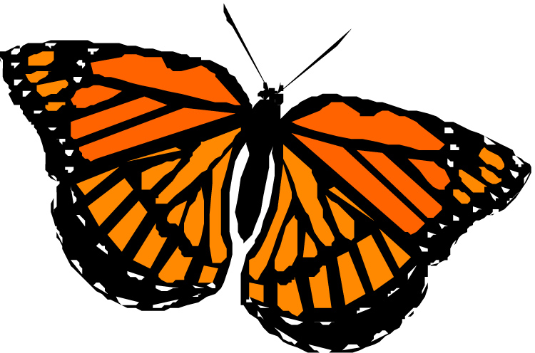 Monarch butterfly monarch clipart kid 2