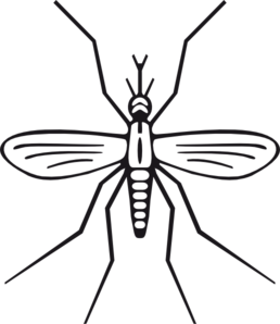 Mosquito Clip Art-Mosquito Clip Art-2