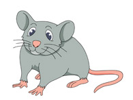 Mouse With Long Tail. Size: 43 Kb-mouse with long tail. Size: 43 Kb-17