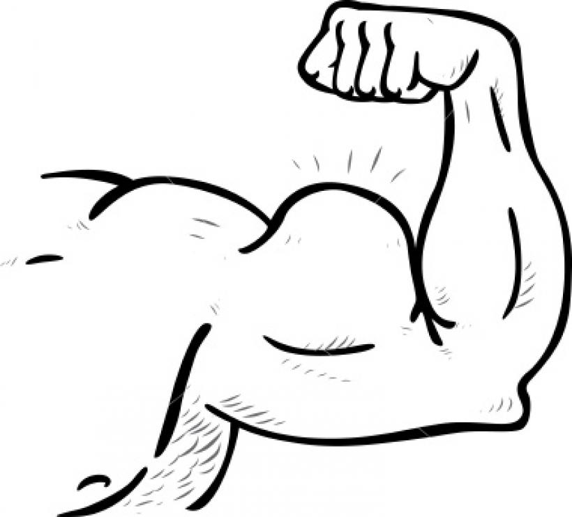 muscular arm clipart muscular .