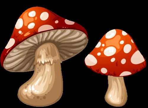 Mushrooms clipart biezumd