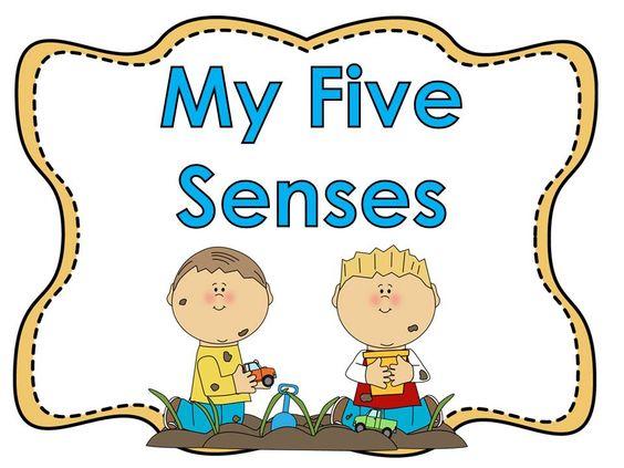 My five senses clipart - .