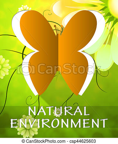 Natural Environment Butterfly Shows Nature 3d Illustration