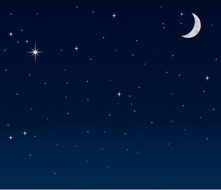 Night Sky background vector .