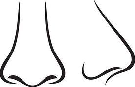 Nose Clipart-nose clipart-14