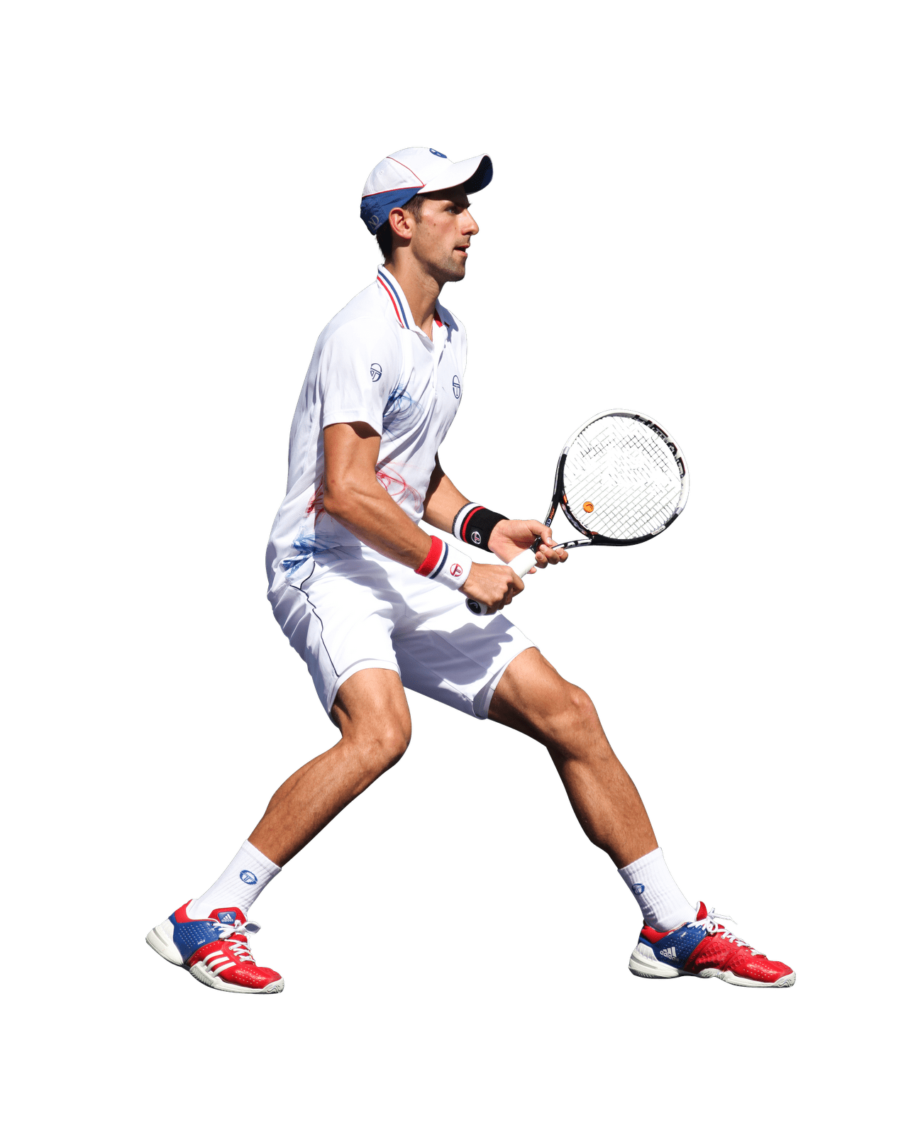 Download · celebrities · sports celebrities · novak djokovic