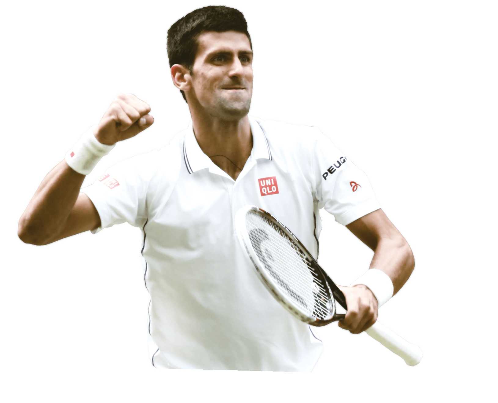 Download · celebrities · sports celebr-Download · celebrities · sports celebrities · novak djokovic-4