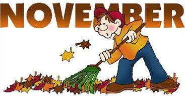 November man raking leaves