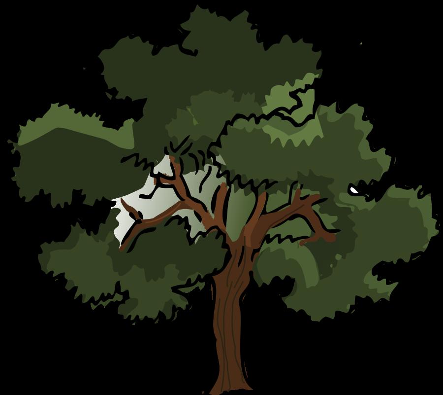 Oak Clipart-oak clipart-8