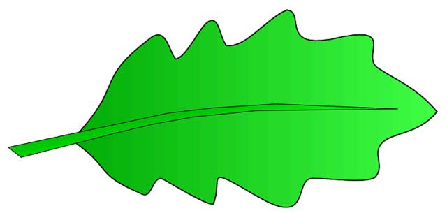 ... Oak Leaf Pictures | Free Download Clip Art | Free Clip Art | on .