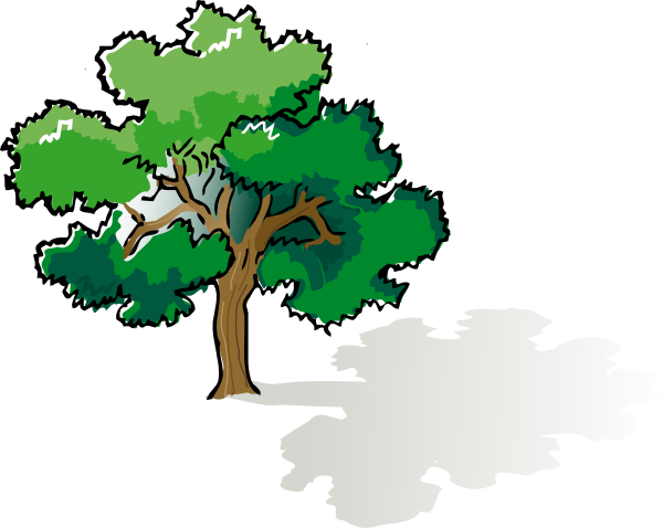 Oak Tree Clip Art At Clker Com Vector Cl-Oak Tree Clip Art At Clker Com Vector Clip Art Online Royalty Free-9