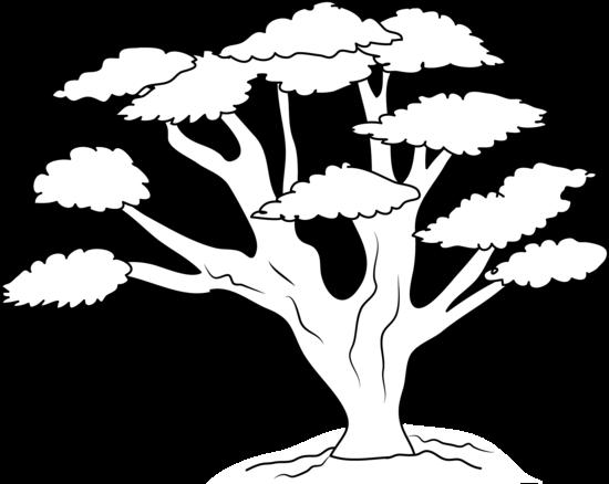 Oak Tree Clip Art Black White-Oak Tree Clip Art Black White-5