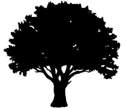 oak tree tree silhouettes .