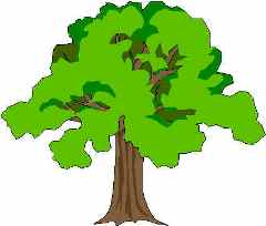 ... Oak Trees Clipart - Free Clipart Images ...