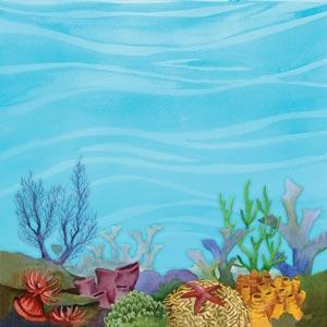 Ocean floor clipart-Ocean floor clipart-14