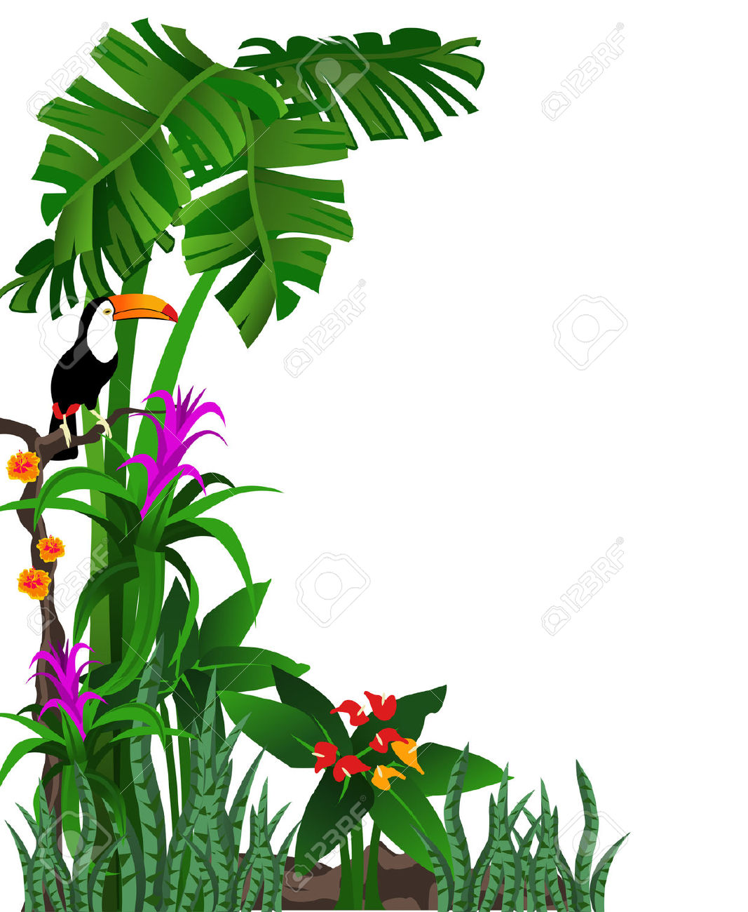 of a tropical forest with .