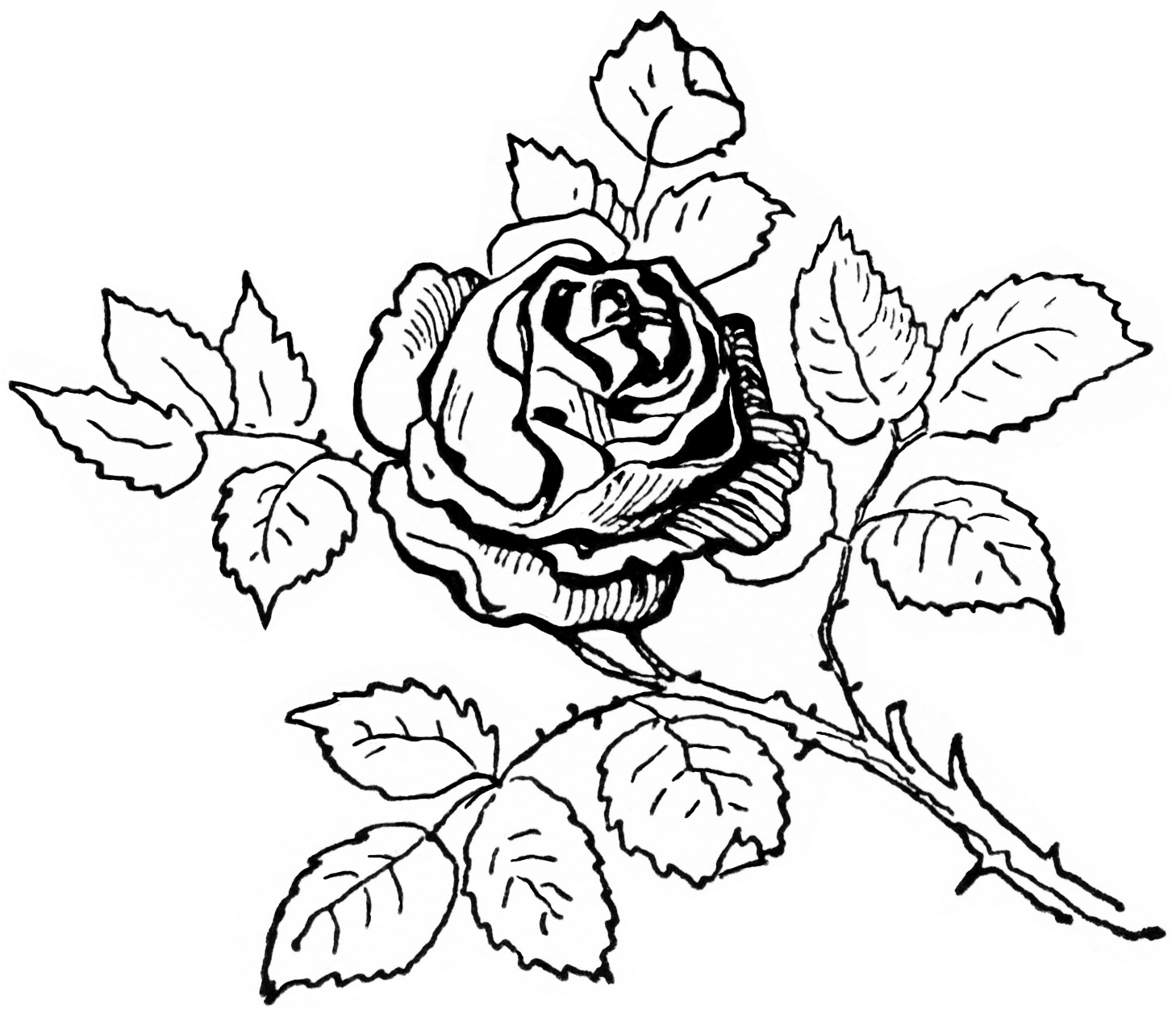 Old Design Shop ~ Free Digital Image: Vi-Old Design Shop ~ free digital image: vintage black and white clipart rose | Old Design Shop Freebies | Pinterest | Clip art, Flower and Design shop-16