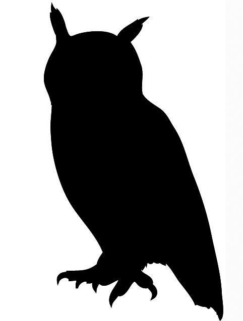 On This Page, Bird Silhouettes, You Will-On this page, Bird Silhouettes, you will find Eagle silhouette, Owl silhouette, Hawk silhouette and silhouette clip art of other birds.-16