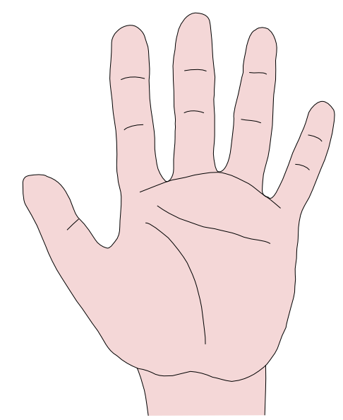Open Hands Illustration Hand Clip Art Praying Hands Clipart An Open