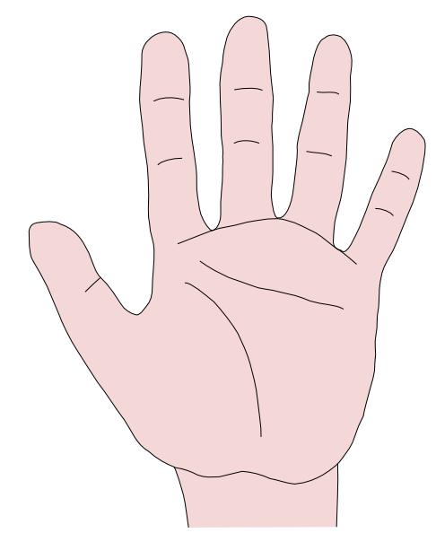 Open Hands Illustration Hand Clip Art Pr-Open Hands Illustration Hand Clip Art Praying Hands Clipart An Open-15