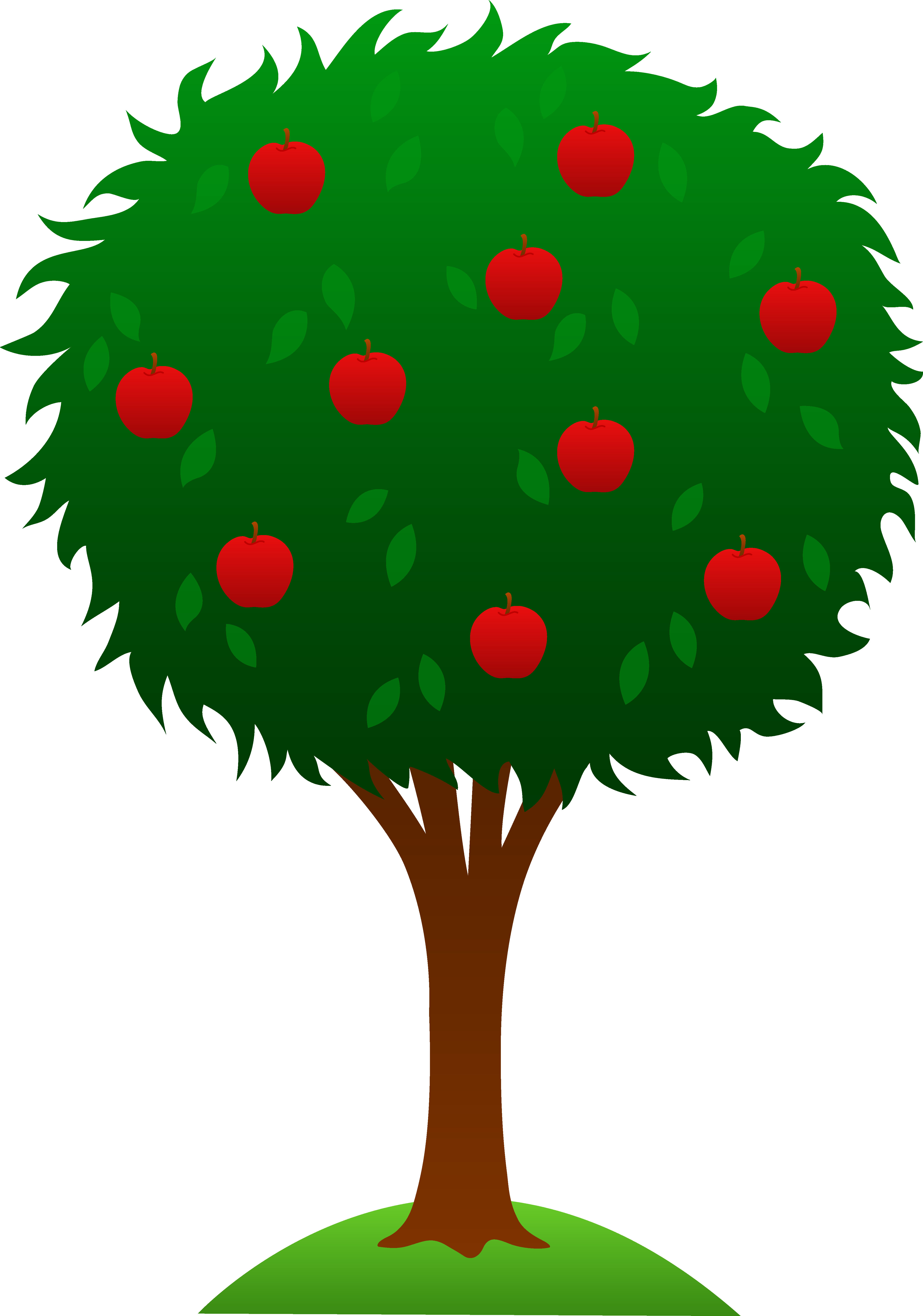 orange tree clipart-orange tree clipart-4