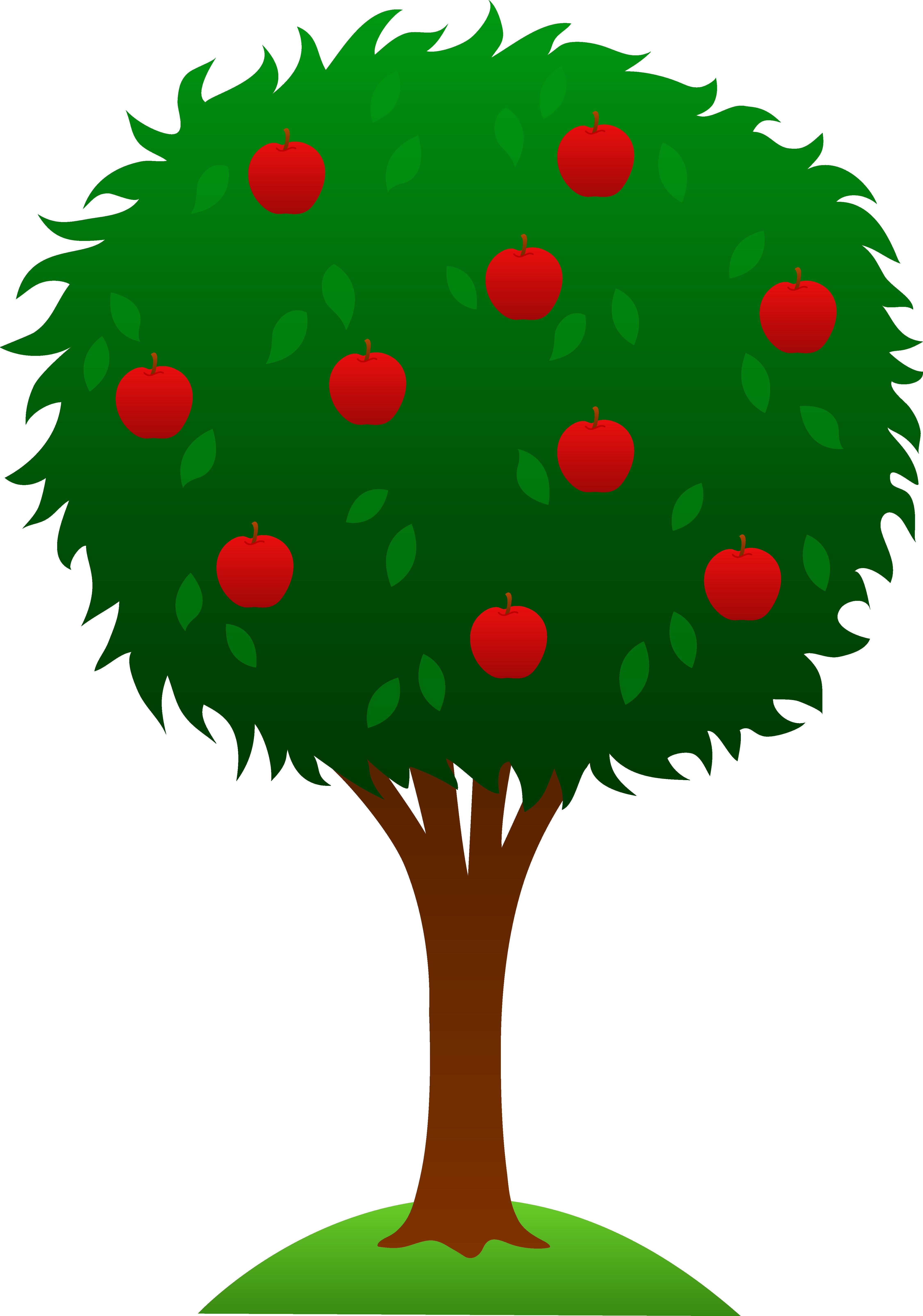 orange tree clipart-orange tree clipart-5