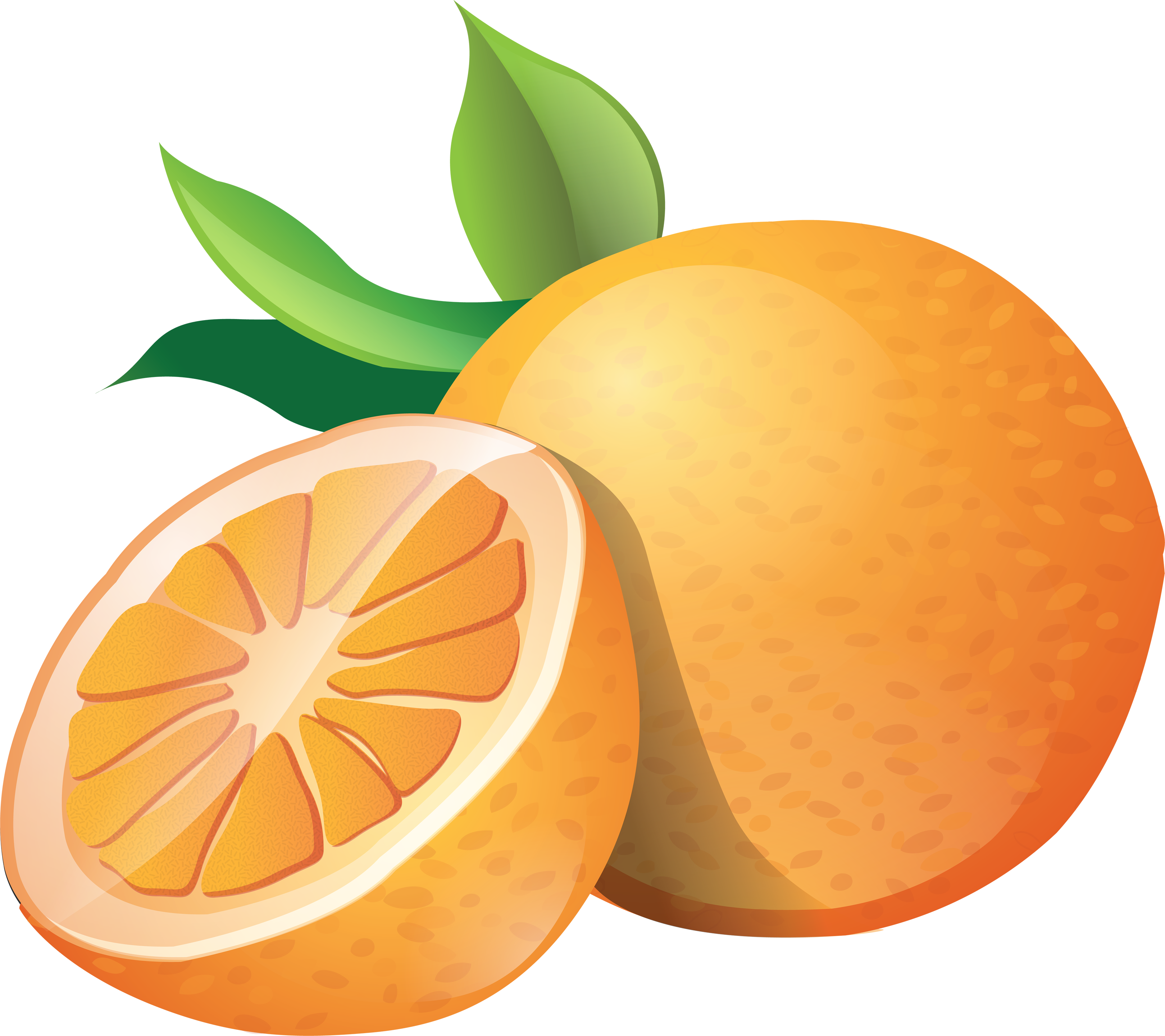Orange Clipart Image Gallery Picture Pho-Orange Clipart Image Gallery Picture Photography Galleries For Pc-9