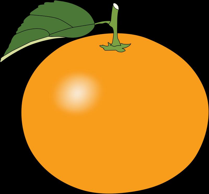 Orange14-orange14-12