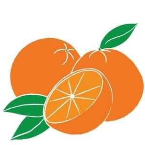 Oranges Clipart Image-Oranges clipart image-14