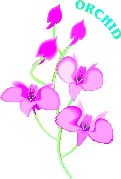 Orchid Flower Clip Art