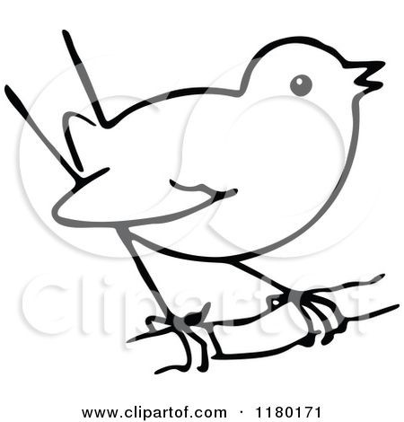 ostrich clipart black and whi - Bird Clipart Black And White