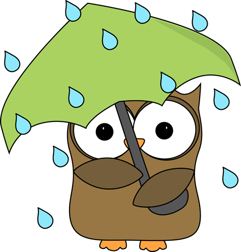 Owl In The Rain-Owl in the Rain-2