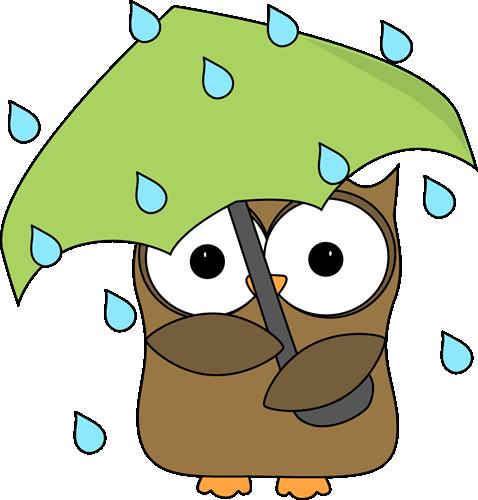 Owl In The Rain-Owl in the Rain-9