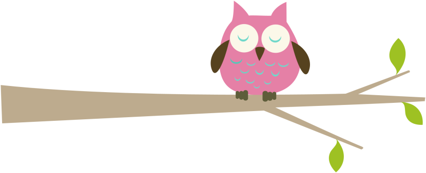 Owl On Branch-Owl On Branch-11