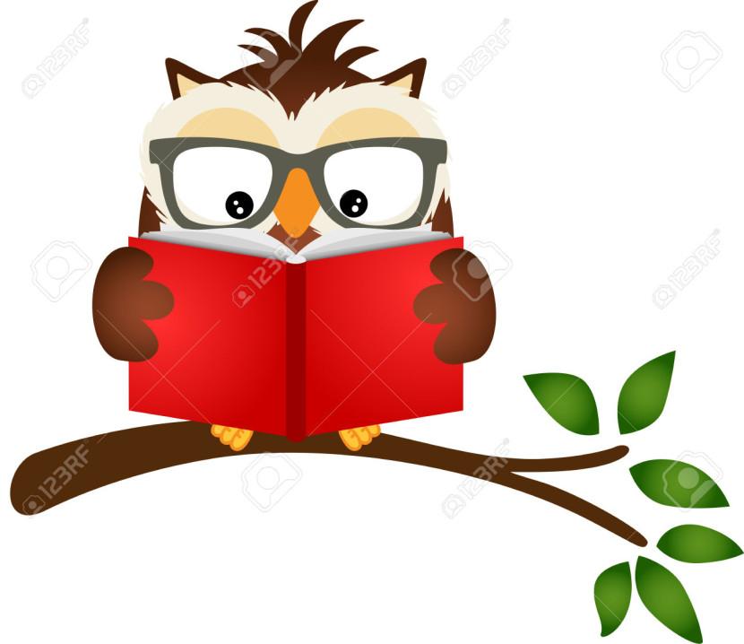 Owl Reading A Book On Tree Branch Royalt-Owl Reading A Book On Tree Branch Royalty Free Cliparts Vectors-6