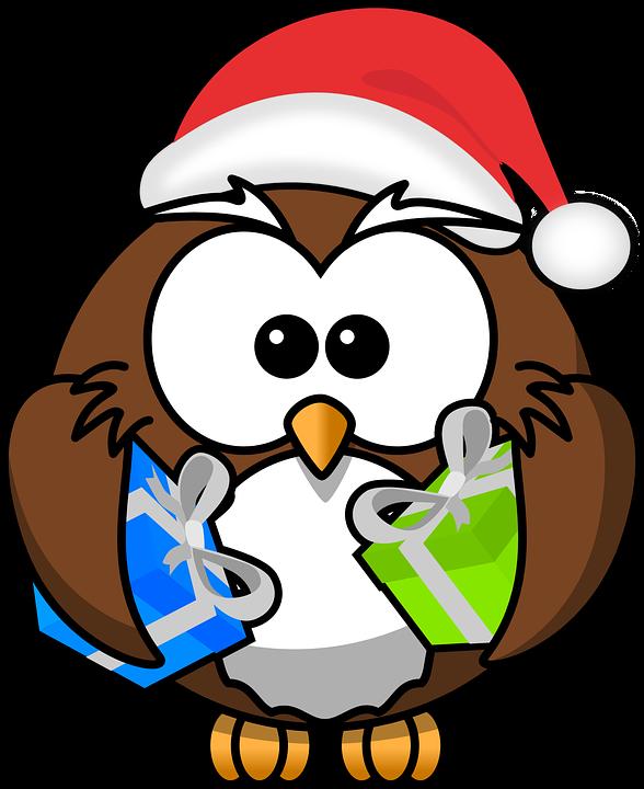 Owl, Santa, Animal, Bird, Christmas