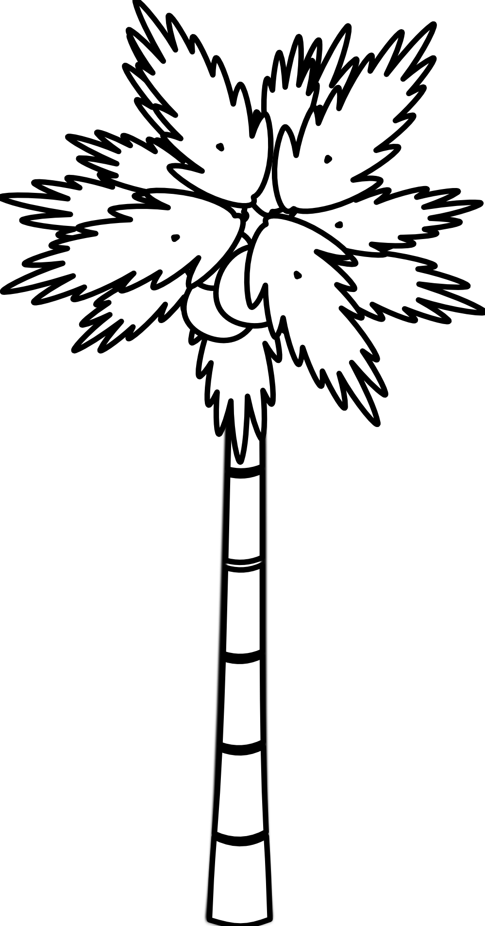 Palm Tree Clipart Black And White-palm tree clipart black and white-10