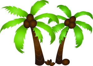 palm tree coconut clipart