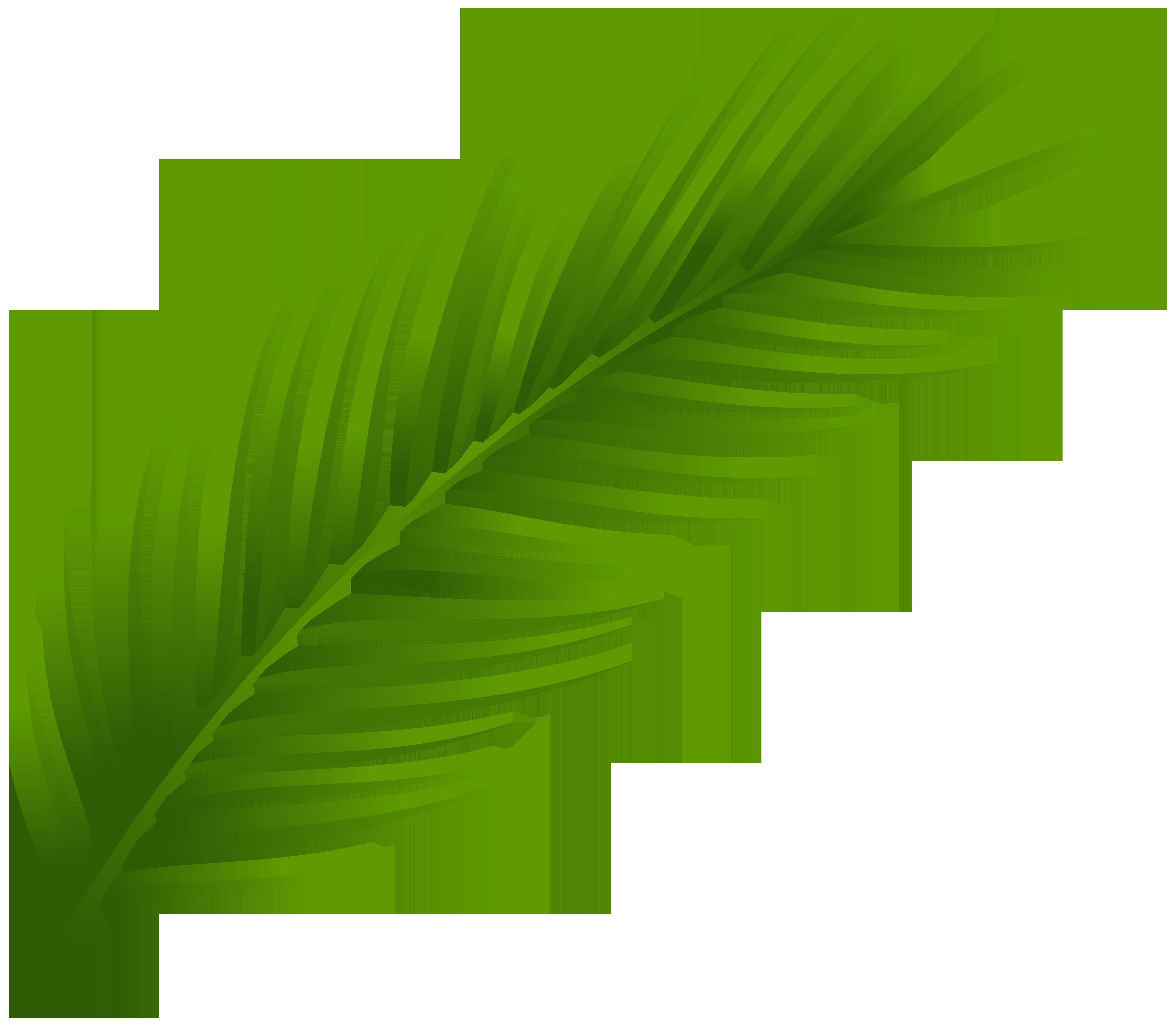 Palm Leaf Clip Art-Palm Leaf Clip Art-9