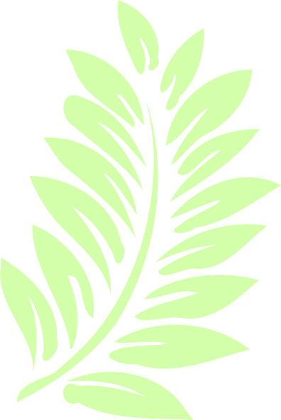 Palm Leaf Clip Art