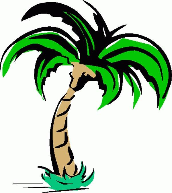 Palm tree art tropical palm trees clip 2 clipart 4