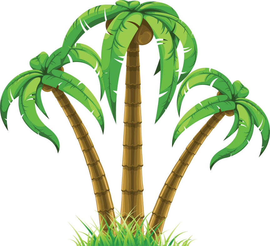Palm Tree Vector Art Free