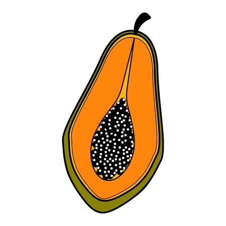 Isolated cut papaya icon. Vector illustration design Illustration