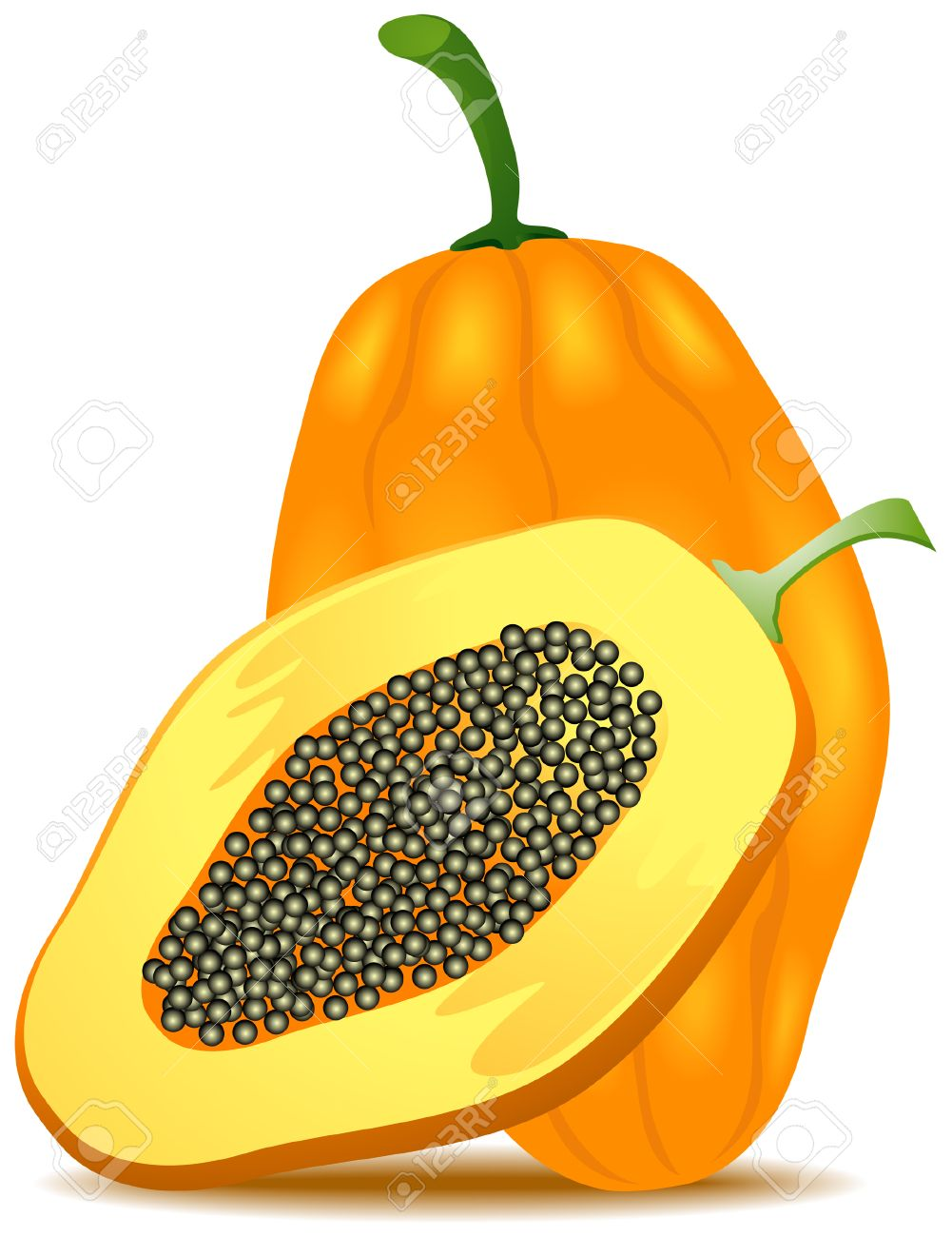 Papaya Illustration with Clipping Path Stock Vector - 3813439