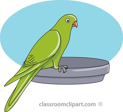 Parakeet. Parakeet Bird Size: 44 Kb From-parakeet. Parakeet Bird Size: 44 Kb From: Bird Clipart-12