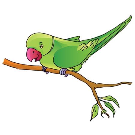 Parrot clipart, Parrot animals clip art black and