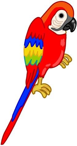 Parrot Clipart-parrot clipart-11