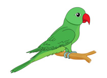 Parrot Green With Red Beak Clipart Size:-Parrot Green With Red Beak Clipart Size: 80 Kb-7